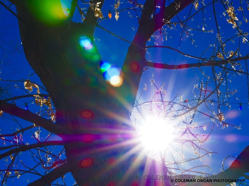 Sun Stars Spots