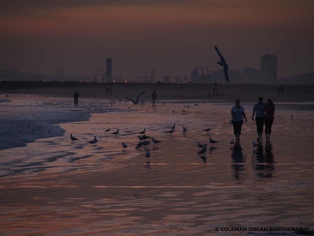 Beach Walk Long Beach Sunset