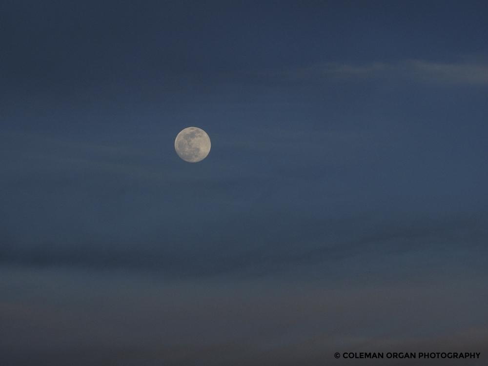 New Mexico Moon