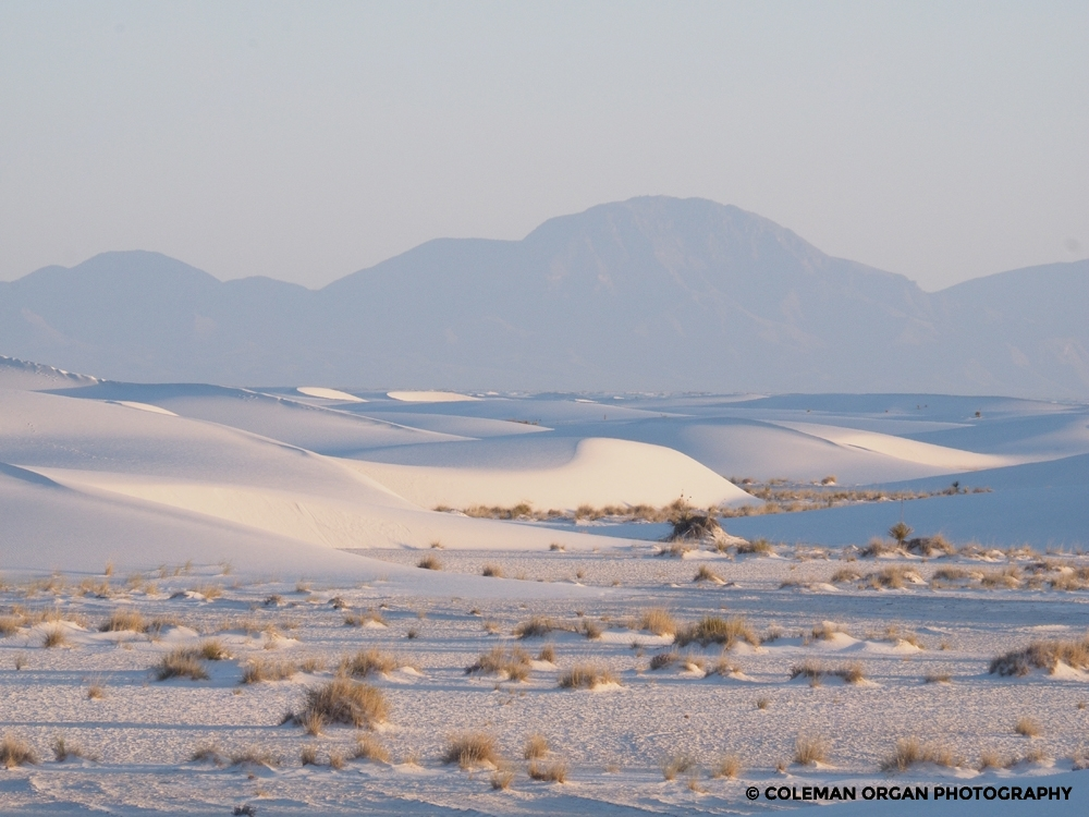 White Sands New Mexico at Dawn