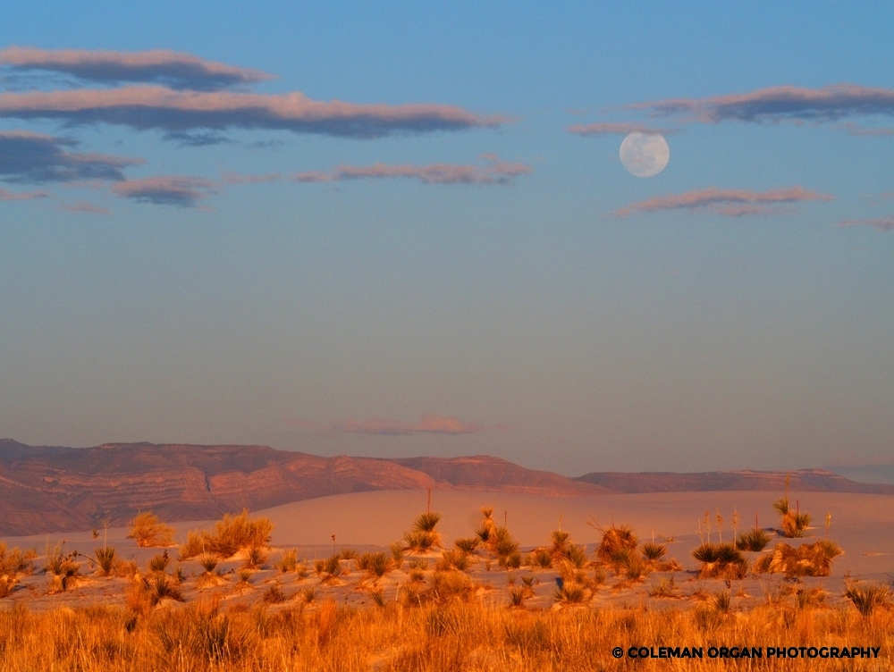 White Sands New Mexico Moonrise