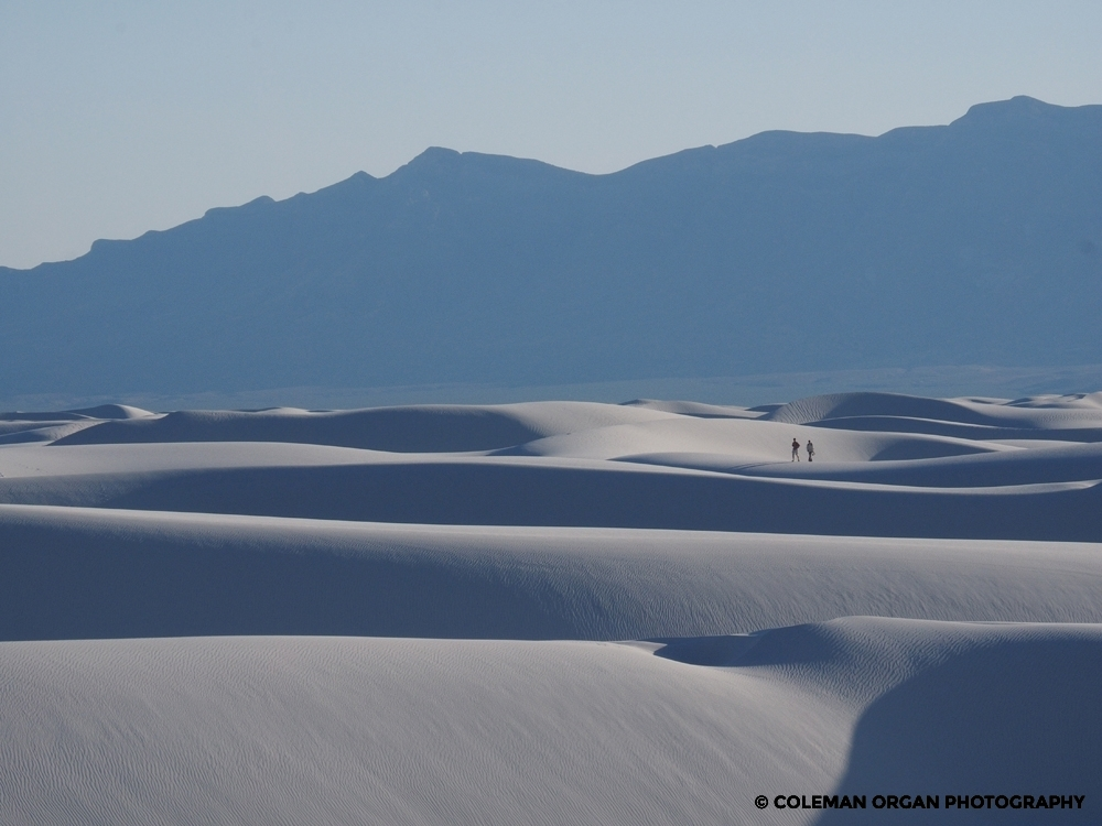 White Sands Walkers